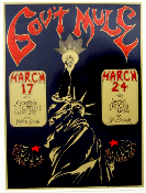 Govt Mule Irving Plaza NYC March 17th & 24th